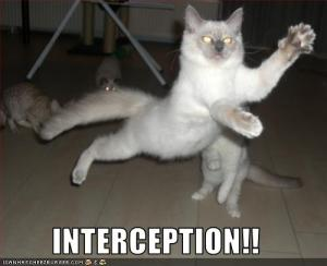 funny-pictures-cat-intercepts