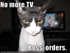 What is not commonly known is that the Cable Gods' evil TV revocation minions resemble cats.